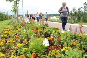 550.000 Besucher kann die Landesgartenschau Bayreuth zur Halbzeit verzeichnen. Foto: Landesgartenschau Bayreuth