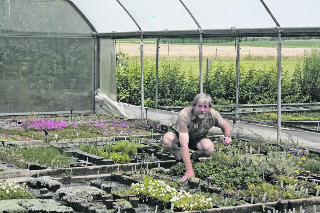 Hans Martin Schmidt, Gärtnermeister, Florist und Autor von Büchern und Fachartikeln, lehrt auch an Berufsschulen für Gärtner.