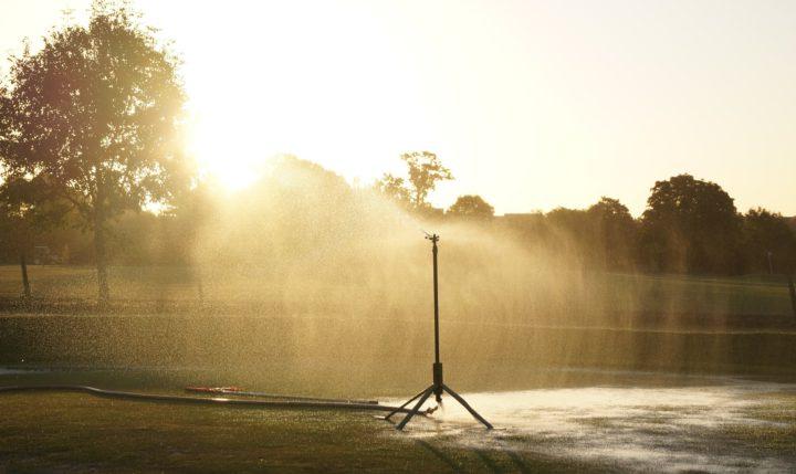 Ist automatische Bewässerung bei der Gartengestaltung für Sie ein Thema?